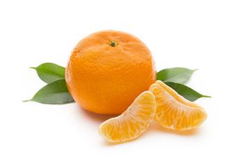 Obst / Mandarine