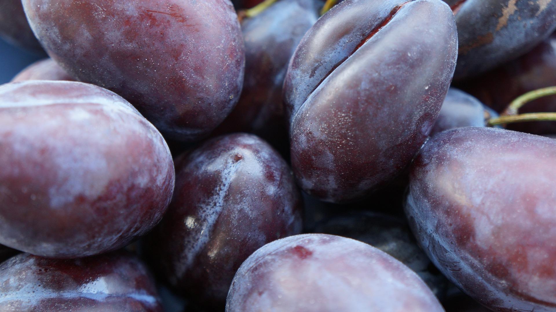 Obst / Pflaumen